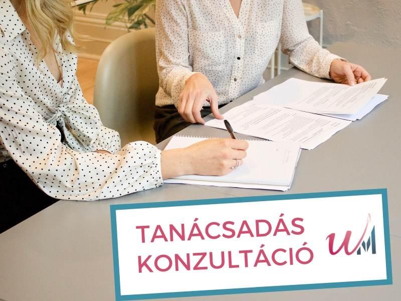 Tanácsadás, konzultáció - Utasi Cégkísérő